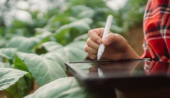 Uma pessoa segurando um tablet no campo