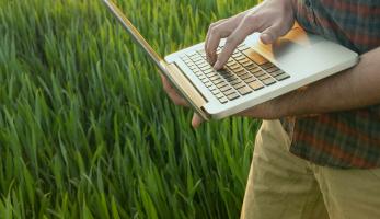 Uma pessoa mexendo no notebook em um ambiente no campo